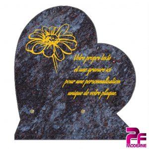 Les plaques granit Coeur